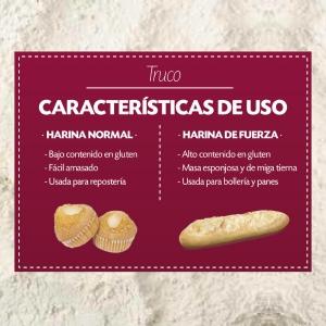 Diferencias de uso entre harina de fuerza y harina normal